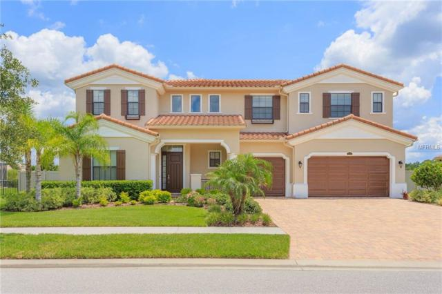 3932 Carrara Court, Wesley Chapel, FL 33543 (MLS #T3118031) :: Team Bohannon Keller Williams, Tampa Properties