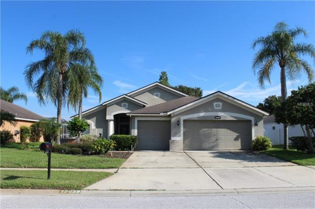 22439 Willow Lakes Drive, Lutz, FL 33549 (MLS #T3118094) :: The Duncan Duo Team