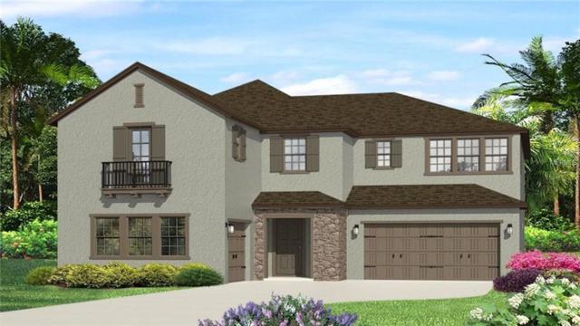 Address Not Published, Lutz, FL 33548 (MLS #T3118117) :: Team Bohannon Keller Williams, Tampa Properties