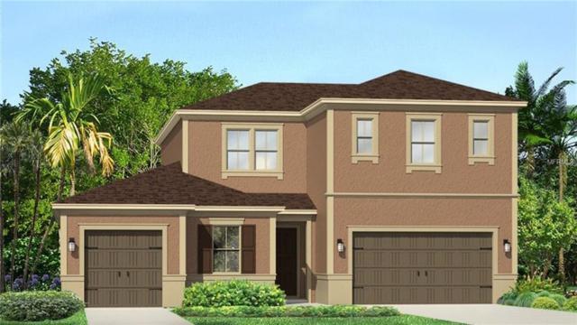 17920 Woodland View Drive, Lutz, FL 33548 (MLS #T3118124) :: Premium Properties Real Estate Services