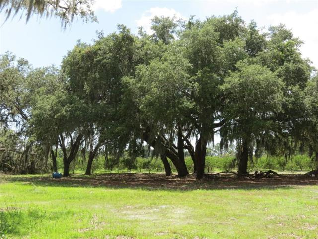 11455 Carlton Road, Duette, FL 34219 (MLS #T3118199) :: Griffin Group