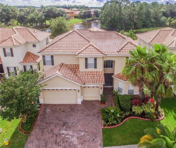 18026 Cozumel Isle Drive, Tampa, FL 33647 (MLS #T3118252) :: Team Bohannon Keller Williams, Tampa Properties