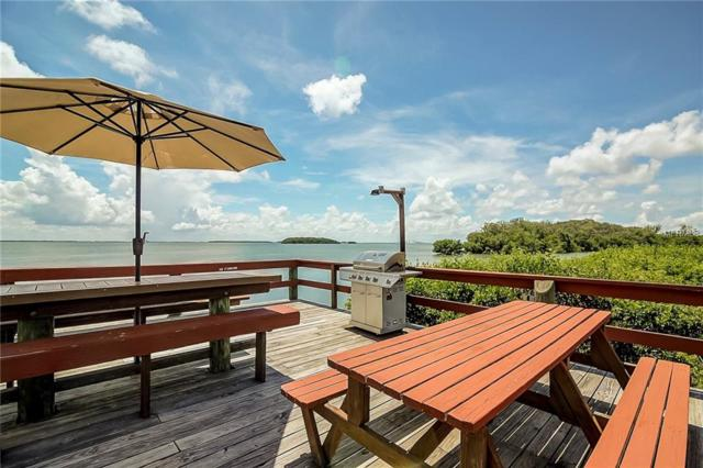 1515 Pinellas Bayway S #41, Tierra Verde, FL 33715 (MLS #T3118264) :: The Lockhart Team