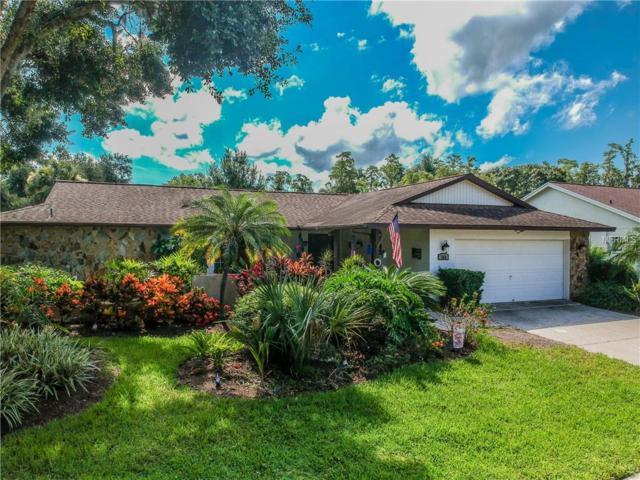 360 Oleander Place, Oldsmar, FL 34677 (MLS #T3118267) :: O'Connor Homes