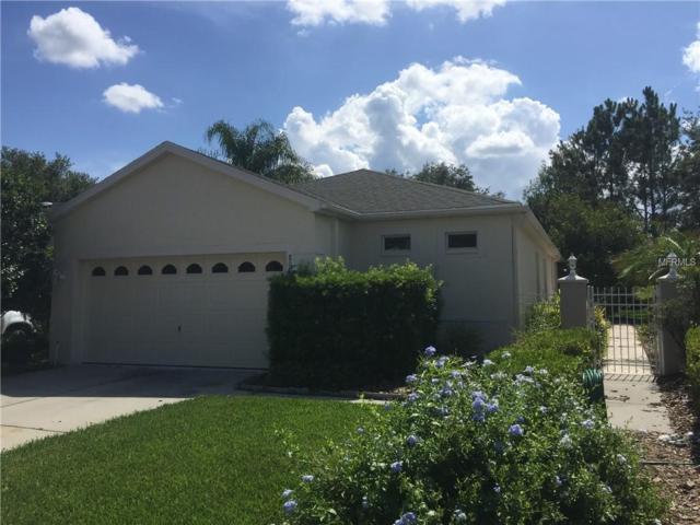 Address Not Published, Land O Lakes, FL 34637 (MLS #T3118278) :: The Lockhart Team