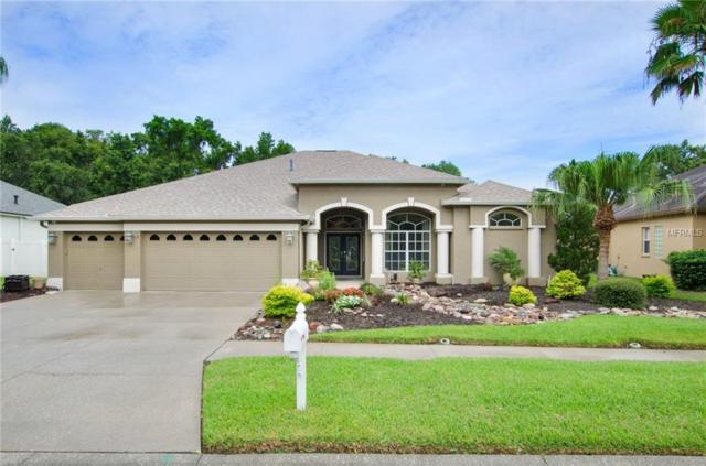 18008 Royal Forest Drive, Tampa, FL 33647 (MLS #T3118421) :: Team Bohannon Keller Williams, Tampa Properties