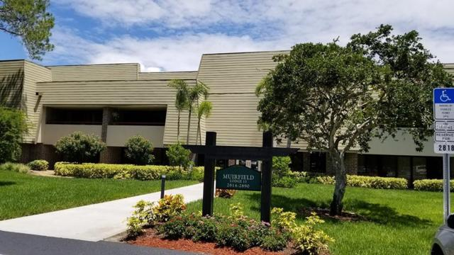 36750 Us Highway 19 N 15-119, Palm Harbor, FL 34684 (MLS #T3118425) :: O'Connor Homes