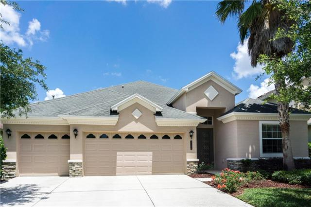 8110 Hampton Glen Drive, Tampa, FL 33647 (MLS #T3118501) :: Team Bohannon Keller Williams, Tampa Properties