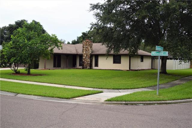 3914 Rosedale Drive, Brandon, FL 33511 (MLS #T3118556) :: Delgado Home Team at Keller Williams