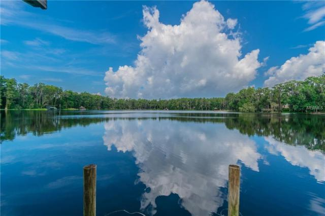 3505 Berger Road, Lutz, FL 33548 (MLS #T3118587) :: The Duncan Duo Team