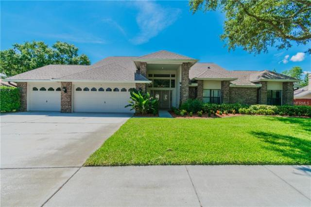 6518 Thoroughbred Loop, Odessa, FL 33556 (MLS #T3118748) :: Griffin Group