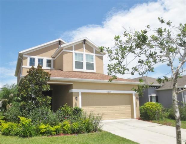 32874 Windelstraw Drive, Wesley Chapel, FL 33545 (MLS #T3118752) :: Team Bohannon Keller Williams, Tampa Properties