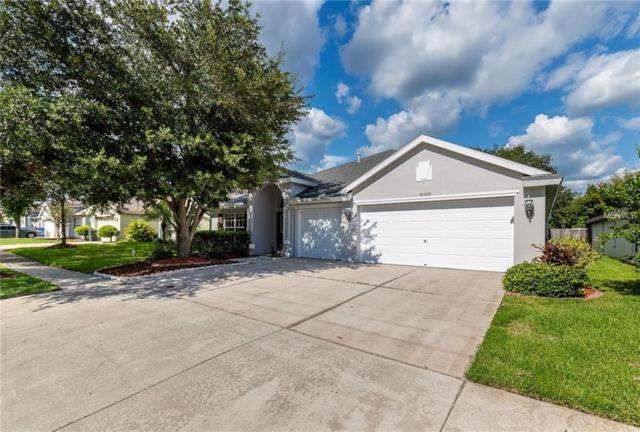 10535 San Travaso Drive, Tampa, FL 33647 (MLS #T3118787) :: Team Bohannon Keller Williams, Tampa Properties