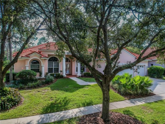 17414 Heather Oaks Place, Tampa, FL 33647 (MLS #T3118808) :: Team Bohannon Keller Williams, Tampa Properties