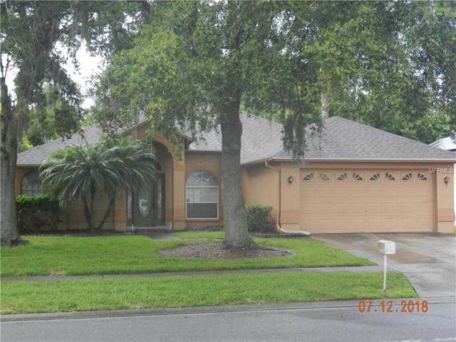 10012 Colonnade Drive, Tampa, FL 33647 (MLS #T3118810) :: Team Bohannon Keller Williams, Tampa Properties