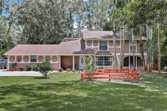 19003 Cedar Lane, Lutz, FL 33548 (MLS #T3118846) :: Griffin Group