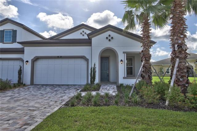 4160 Barletta Court, Wesley Chapel, FL 33543 (MLS #T3118847) :: Griffin Group