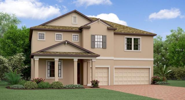 Address Not Published, Wesley Chapel, FL 33543 (MLS #T3118850) :: Team Bohannon Keller Williams, Tampa Properties