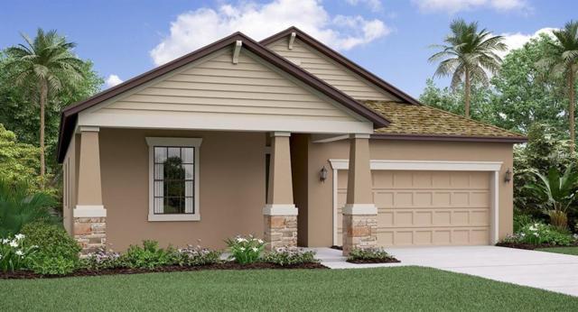 4532 Coachford Drive, Wesley Chapel, FL 33543 (MLS #T3118862) :: The Duncan Duo Team