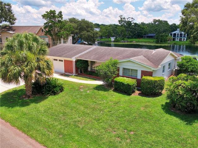 10711 Carroll Lake Drive, Tampa, FL 33618 (MLS #T3118895) :: Cartwright Realty