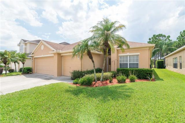 3203 Sago Point Court, Land O Lakes, FL 34639 (MLS #T3118943) :: Cartwright Realty