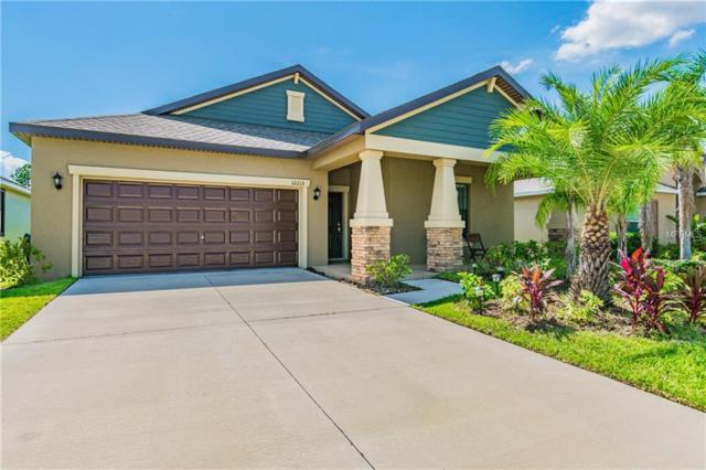 12215 Ballentrae Forest Drive, Riverview, FL 33579 (MLS #T3118944) :: The Duncan Duo Team