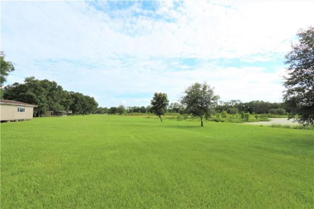 3604 Little Stearns Road, Valrico, FL 33594 (MLS #T3118948) :: GO Realty