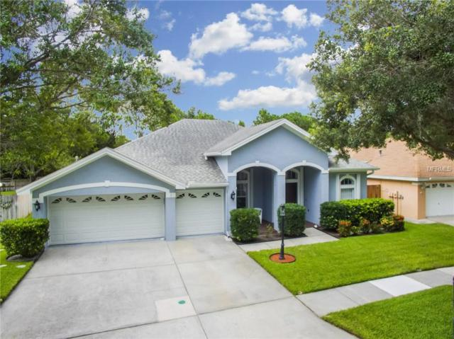 10008 Bennington Drive, Tampa, FL 33626 (MLS #T3118965) :: Gate Arty & the Group - Keller Williams Realty