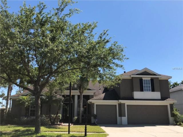 19104 Autumn Woods Avenue, Tampa, FL 33647 (MLS #T3118967) :: Team Bohannon Keller Williams, Tampa Properties