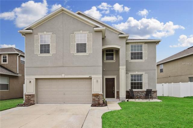 3760 Tuckerton Drive, Land O Lakes, FL 34638 (MLS #T3118996) :: Cartwright Realty