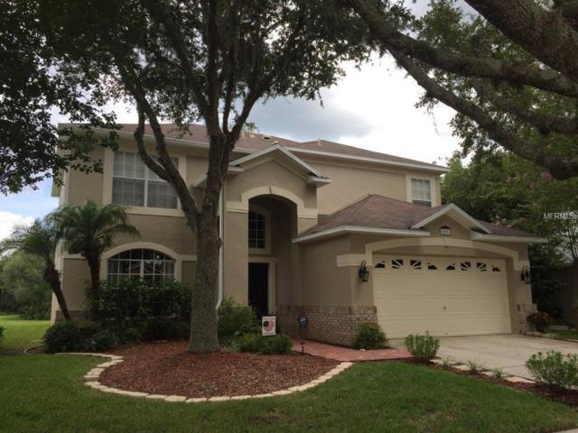18911 Bellflower Road, Tampa, FL 33647 (MLS #T3119009) :: Baird Realty Group