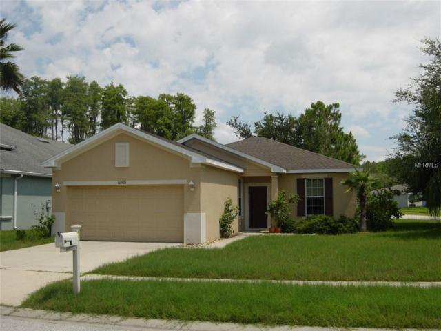 10921 Tree Cactus Loop, Land O Lakes, FL 34638 (MLS #T3119046) :: Cartwright Realty