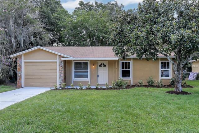 2906 Martha Lane, Land O Lakes, FL 34639 (MLS #T3119048) :: Cartwright Realty