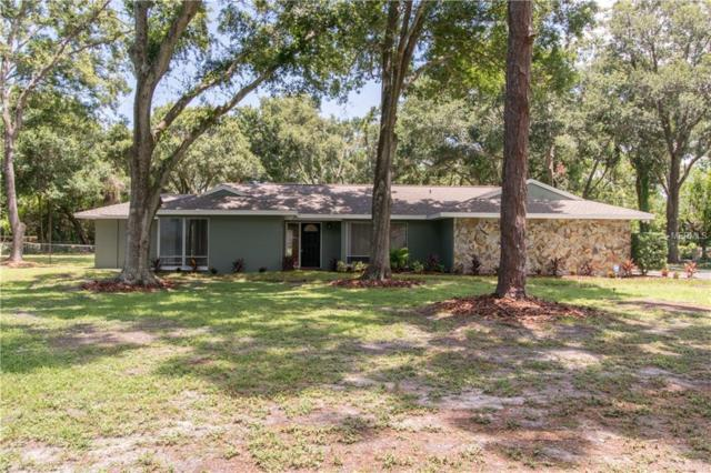 1840 Greenlea Drive, Clearwater, FL 33765 (MLS #T3119077) :: RE/MAX Realtec Group