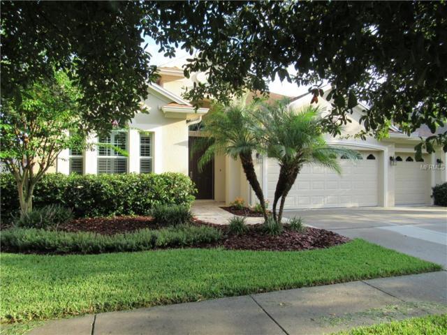 3555 Diamond Falls Circle, Land O Lakes, FL 34638 (MLS #T3119078) :: Delgado Home Team at Keller Williams
