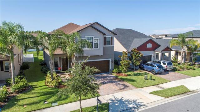 11667 Lake Boulevard, New Port Richey, FL 34655 (MLS #T3119082) :: Griffin Group