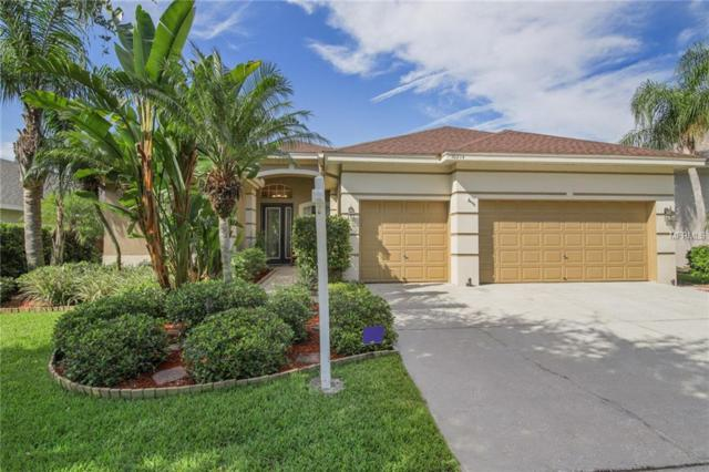 10214 Millport Drive, Tampa, FL 33626 (MLS #T3119085) :: Gate Arty & the Group - Keller Williams Realty