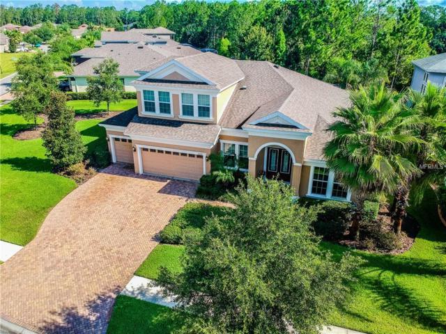 32201 Summerglade Drive, Wesley Chapel, FL 33545 (MLS #T3119086) :: Team Bohannon Keller Williams, Tampa Properties