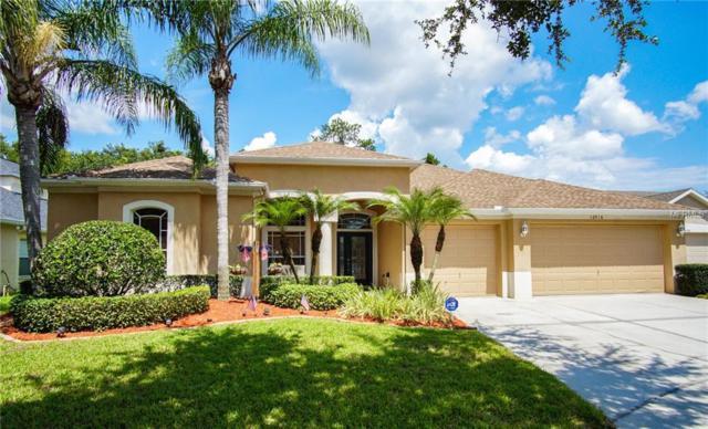 16916 Falconridge Road, Lithia, FL 33547 (MLS #T3119178) :: Dalton Wade Real Estate Group
