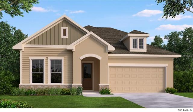 2829 Posada Lane, Odessa, FL 33556 (MLS #T3119235) :: Griffin Group