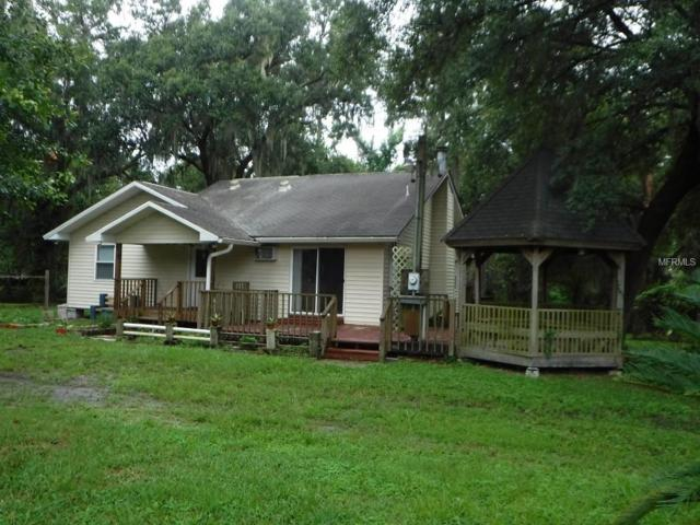 10211 Dry Bridge Road, Lithia, FL 33547 (MLS #T3119243) :: Lovitch Realty Group, LLC