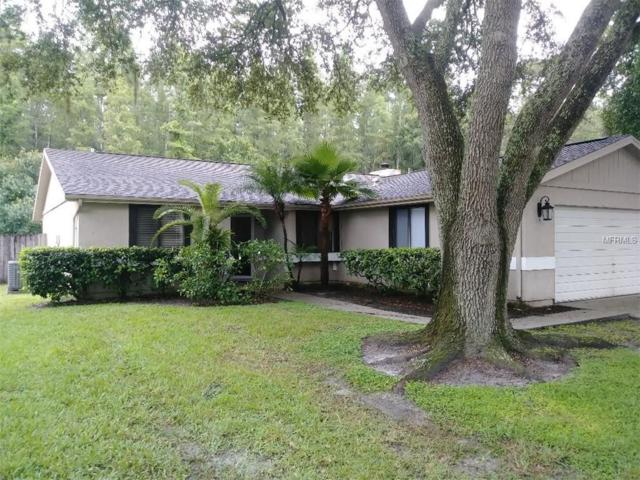 5340 Black Pine Drive, Tampa, FL 33624 (MLS #T3119244) :: Team Bohannon Keller Williams, Tampa Properties