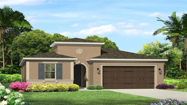 Address Not Published, Wesley Chapel, FL 33543 (MLS #T3119267) :: Griffin Group