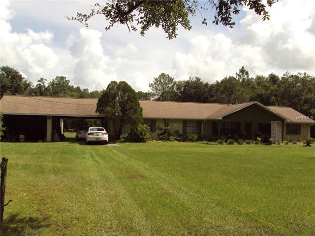 3914 Kirkland Road, Plant City, FL 33566 (MLS #T3119310) :: Gate Arty & the Group - Keller Williams Realty