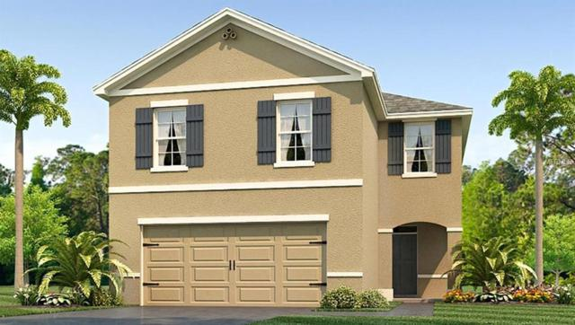 2317 Ashberry Ridge Drive, Plant City, FL 33563 (MLS #T3119332) :: Gate Arty & the Group - Keller Williams Realty