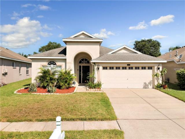 4549 Gateway Boulevard, Wesley Chapel, FL 33544 (MLS #T3119373) :: Griffin Group