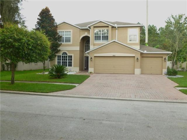 29920 Cedar Waxing Drive, Wesley Chapel, FL 33545 (MLS #T3119381) :: Griffin Group