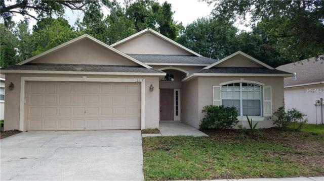 12517 Sparkleberry Road, Tampa, FL 33626 (MLS #T3119406) :: The Duncan Duo Team