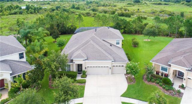 7207 Peregrina Lp, Wesley Chapel, FL 33545 (MLS #T3119414) :: Team Bohannon Keller Williams, Tampa Properties