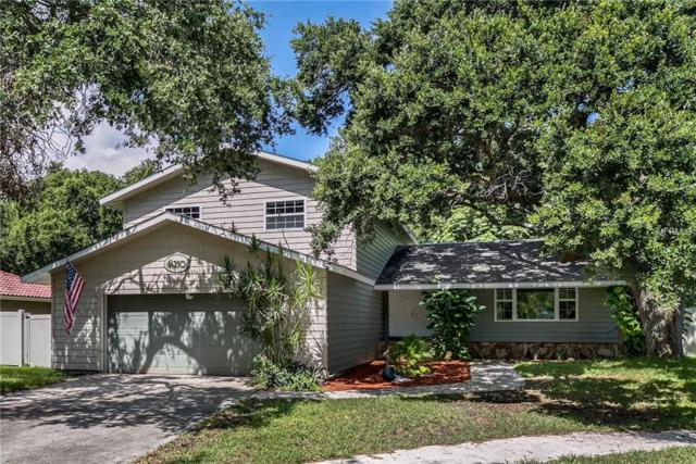 14250 Lark Court, Clearwater, FL 33762 (MLS #T3119415) :: Griffin Group